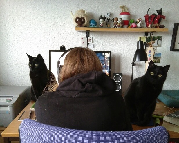 Me surrounded by my two cats, not CAT tools.